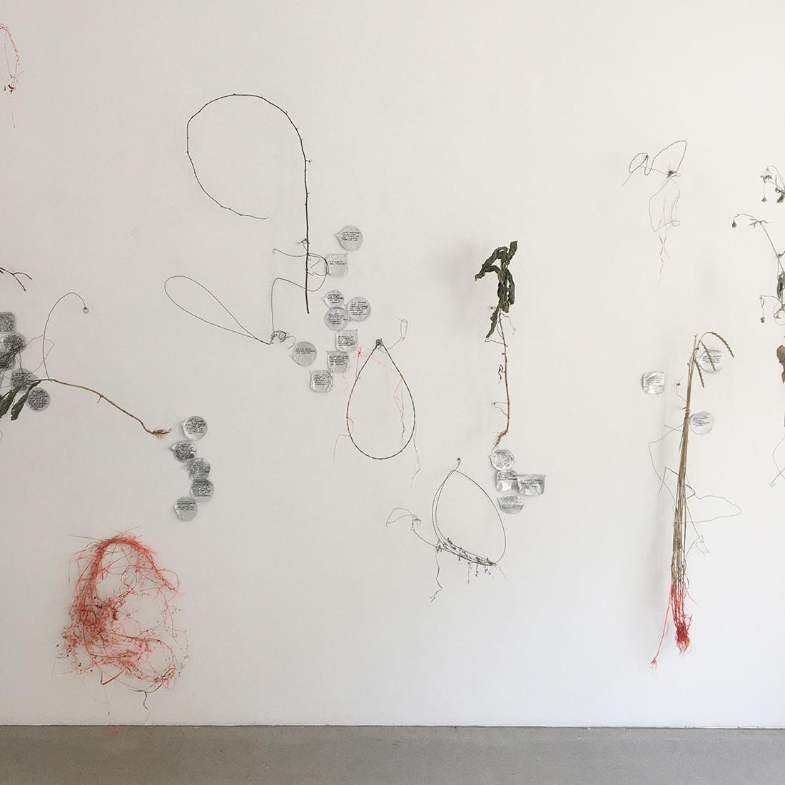 iris andraschek gallery raum mit licht installation