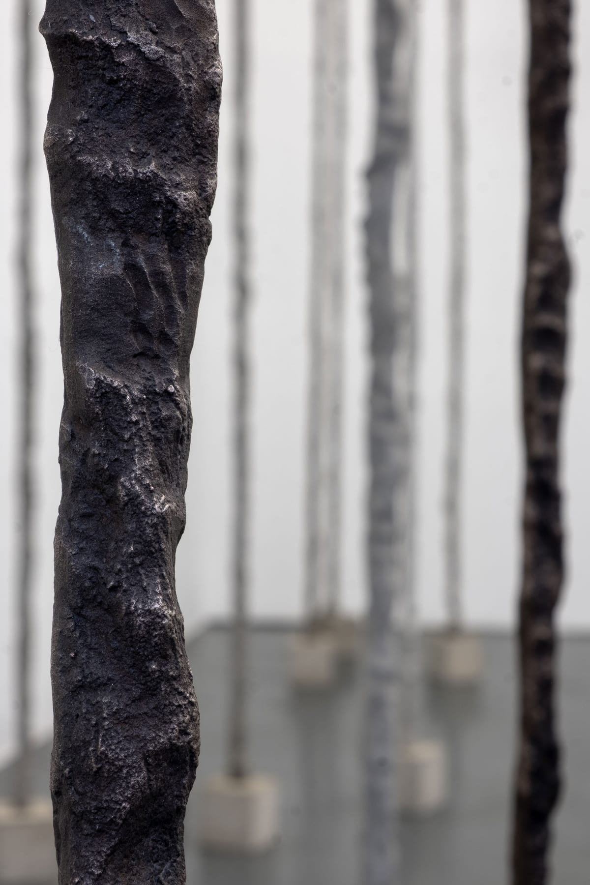 Sofia Goscinski | Unttld Contemporary | Believer