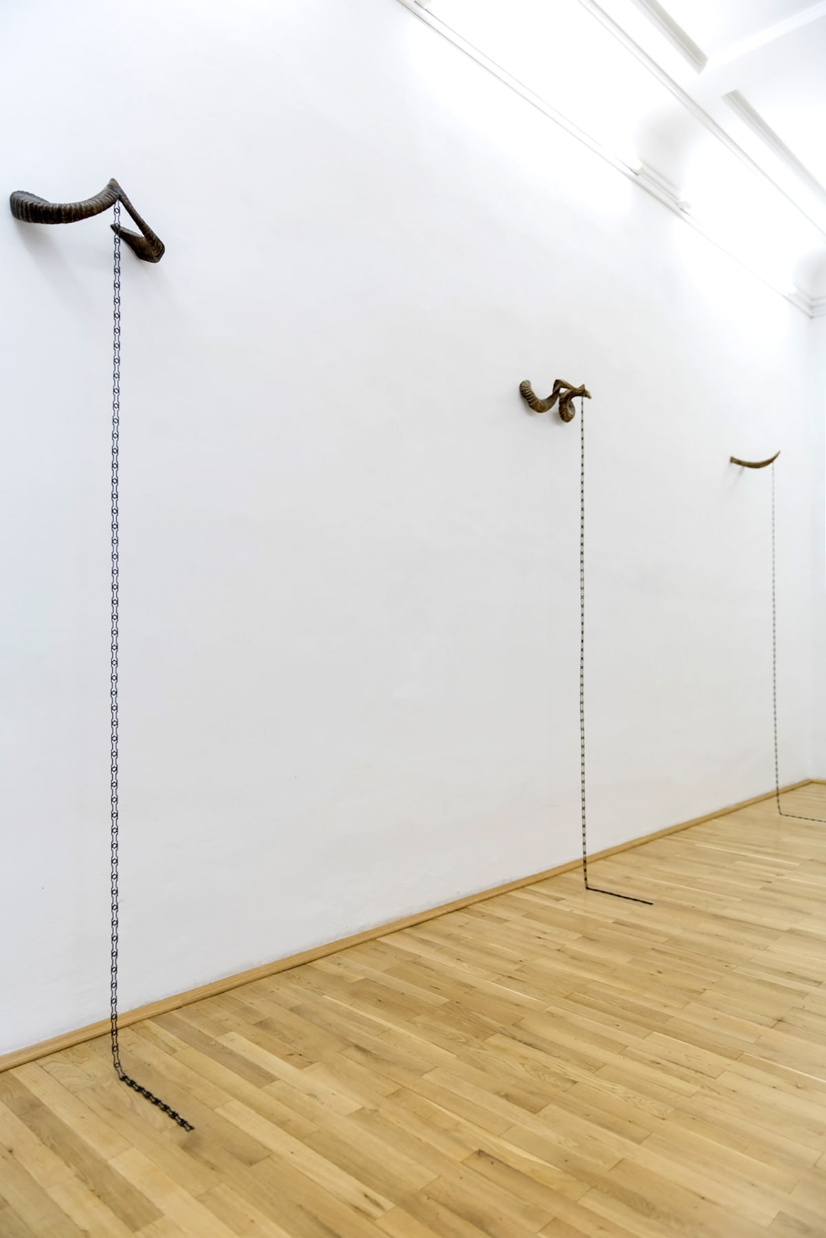 Image shows intallation of 3 horns separetely mounted on the wall that each have a chain that falls till the floor