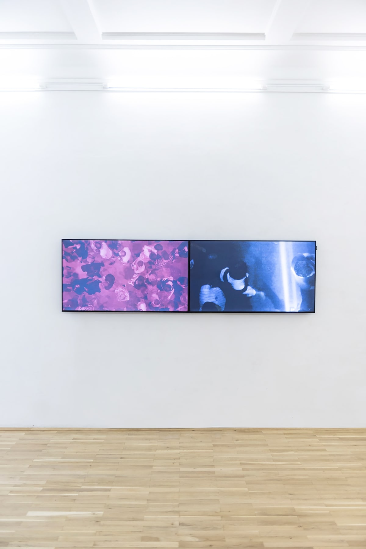 Video installation. A wide screen shows a film on the wall