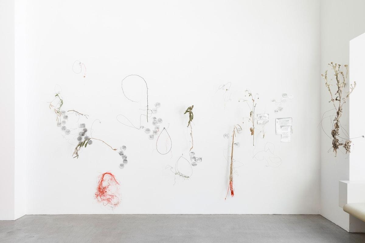 art galleries in vienna, raum mit licht, munchies art club