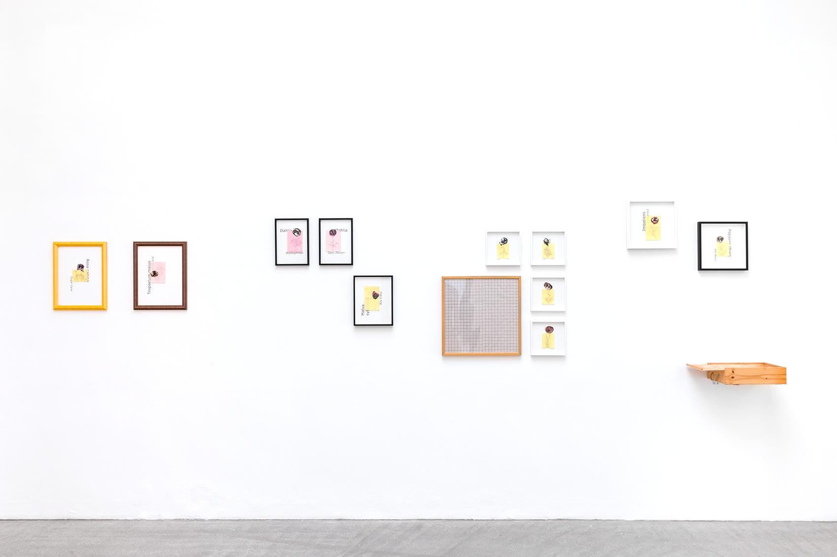 andrea van der straeten, gallery raum mit licht, curated by 2020