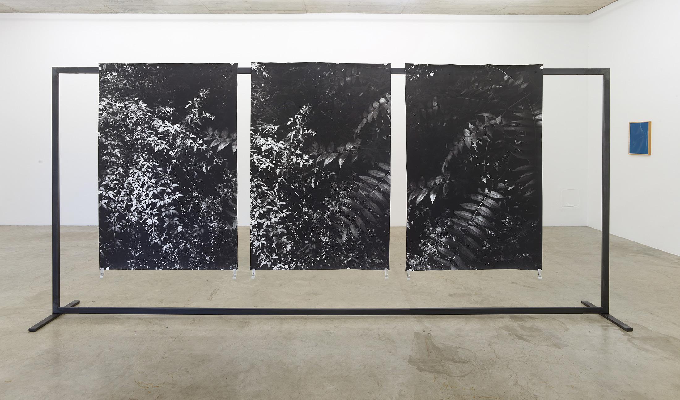 berit schneidereit, artist, neuer aachener kunstverein, viewing room, munchies art club, exhibition