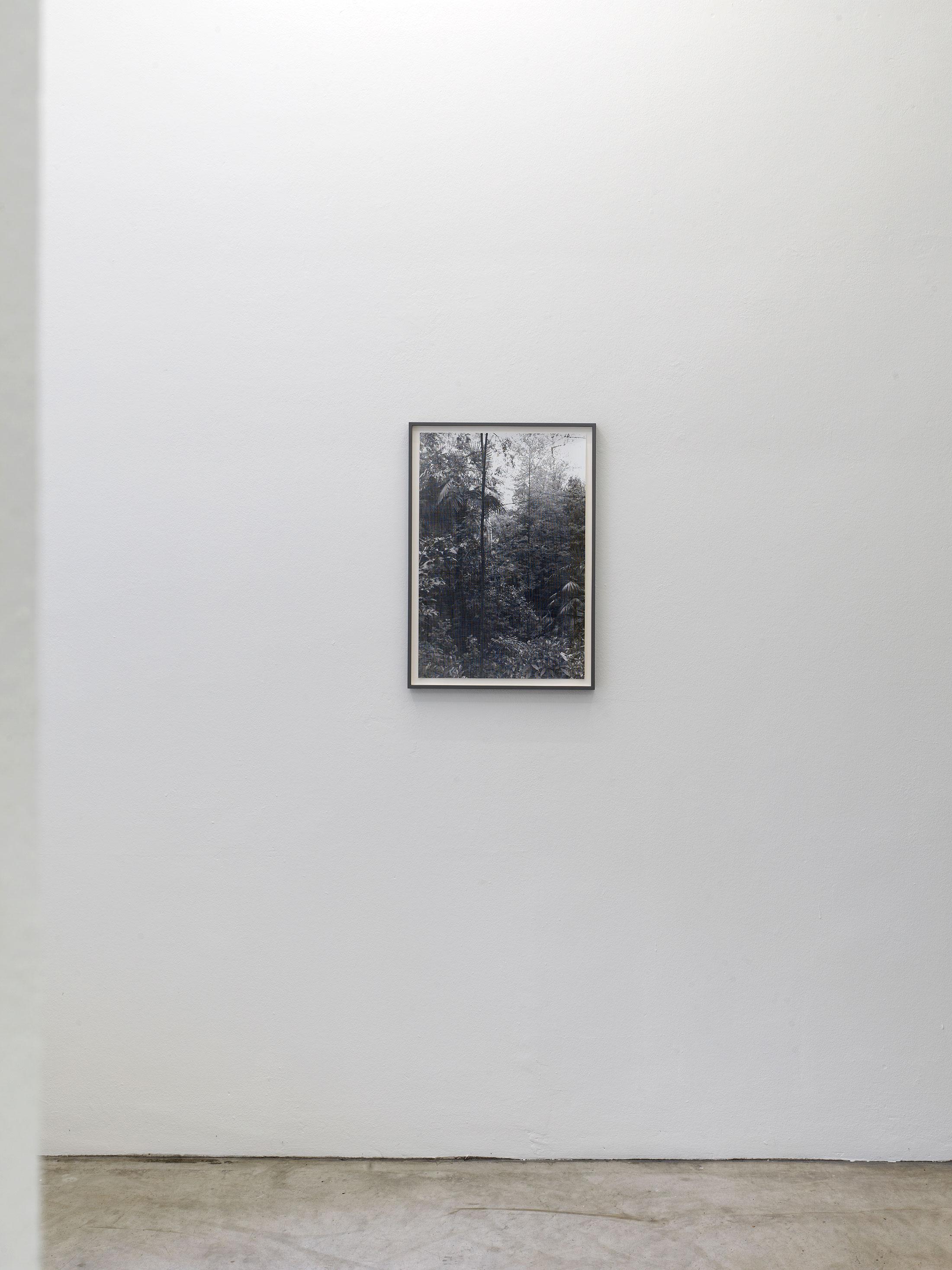 neuer aachener kunstverein, schneidereit, duesseldorf, gursky, berit,