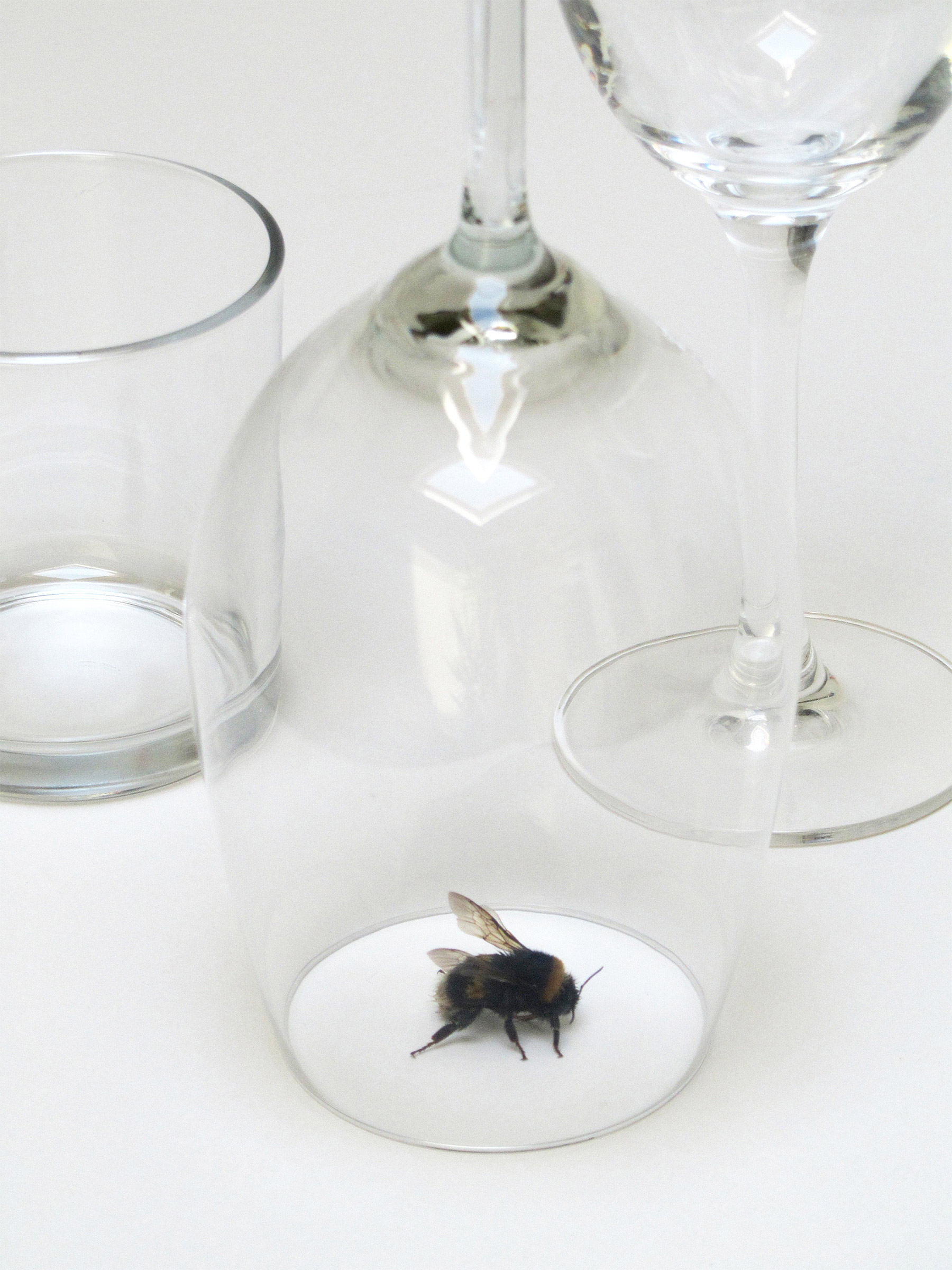the visitor, conceptual art, peter de meyer, glass, taple, hummel