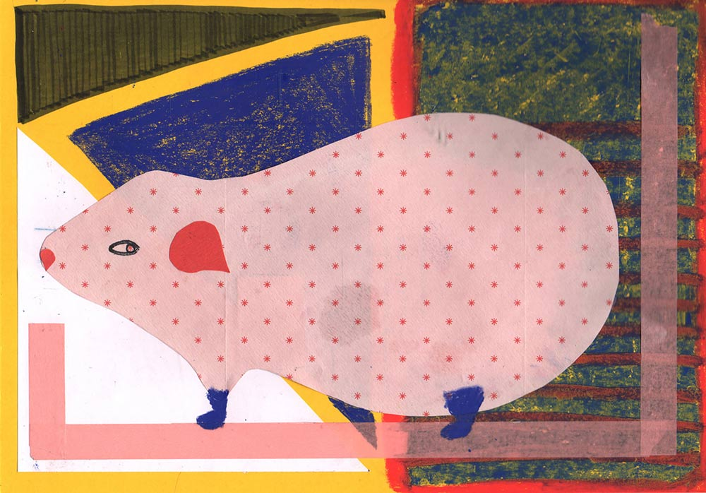 penelope, guineapig, drawing, colorful, alexandra feusi, available artwork, sale