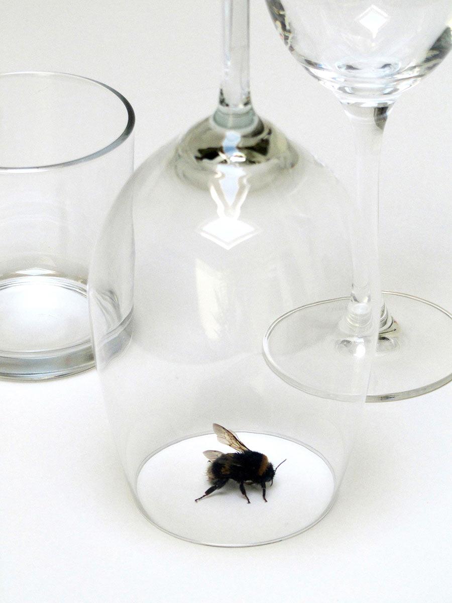 contemporary artist, geukens de vil, raum mit licht gallery, installation