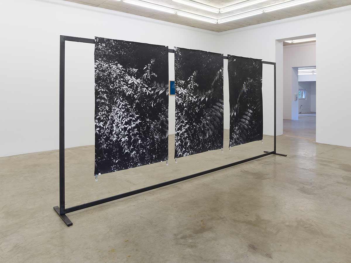 Berit Schneider, female contemporary artist, installation, collect