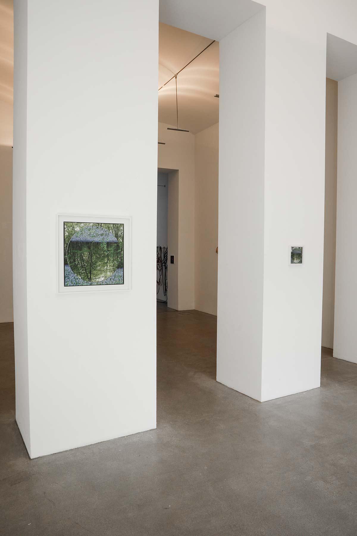 domino exhibition, viewing room, photography, munchies art club, art platform, raum mit licht, art gallery, vienna