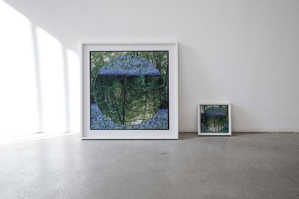 aliki braine, contemporary art