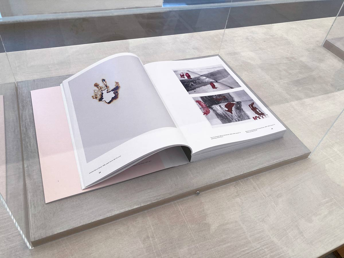 monograph, collection, contemporary, publications, experimental, architectural,