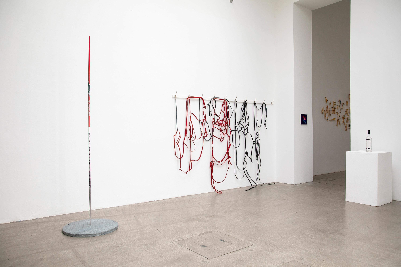 domino, raum mit licht, Peter de meyer, henkend de vil, gallery,
