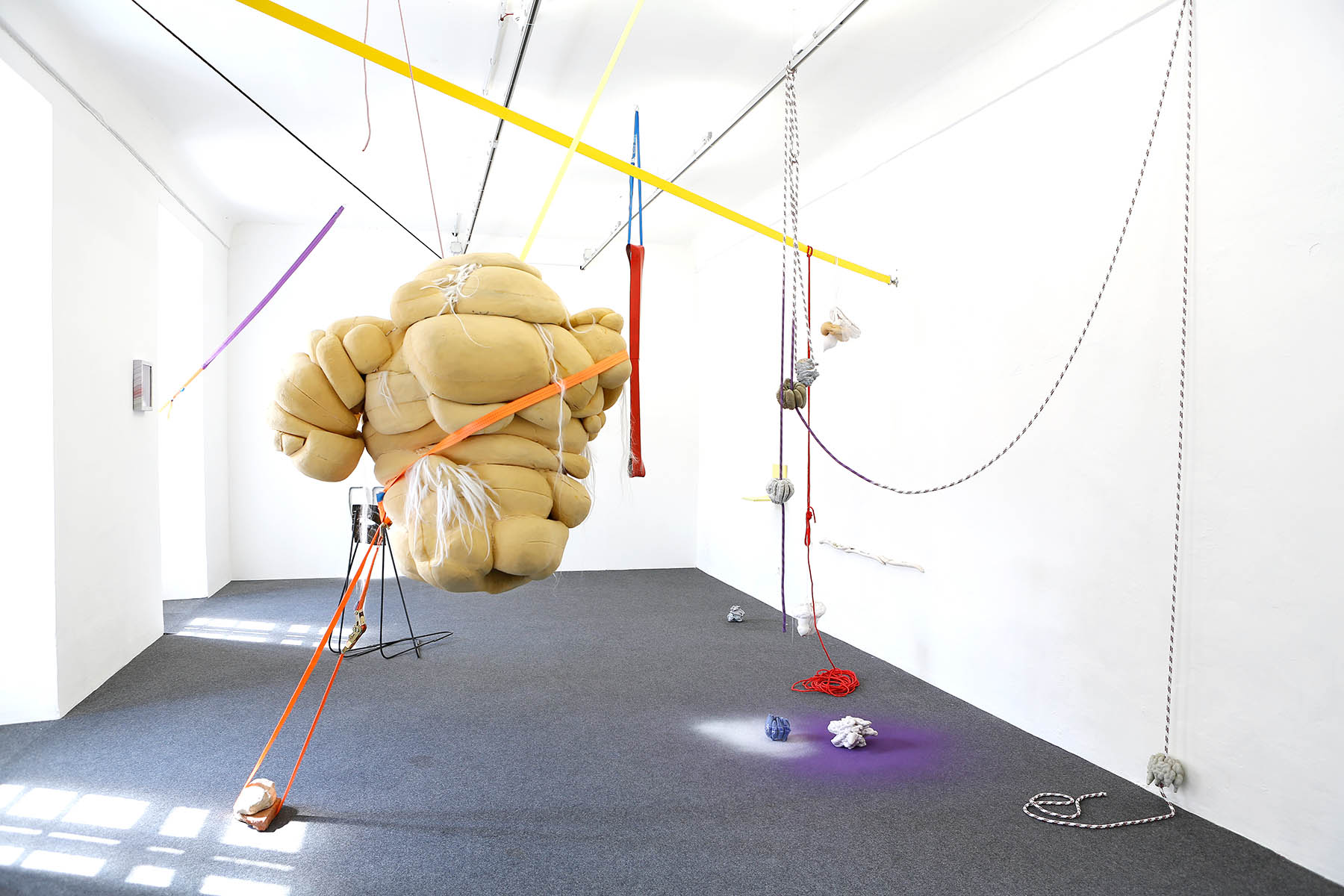 installation, ines doujak, curated by barbara horvath