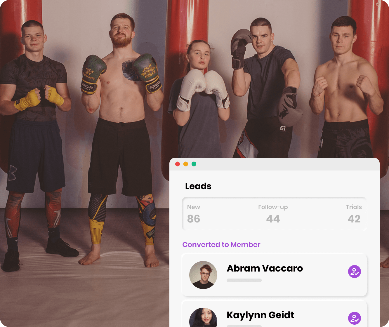 Group of boxers ready for a fight
