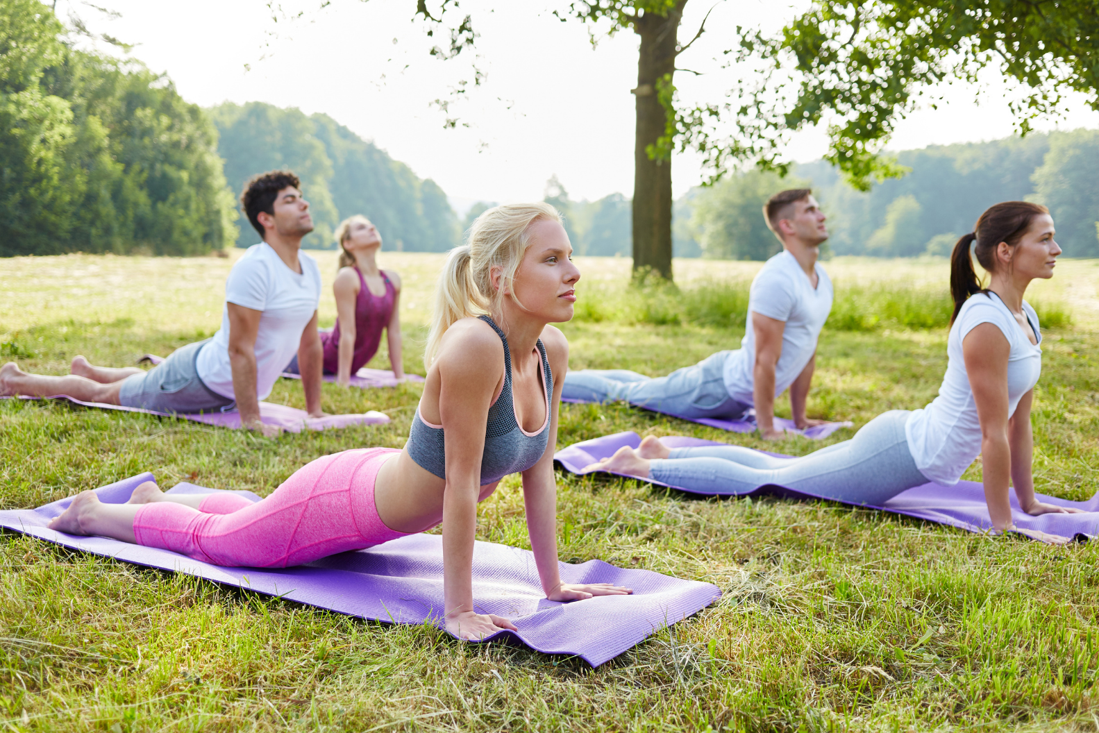 A group of yoga students performing a yoga asana in a green park