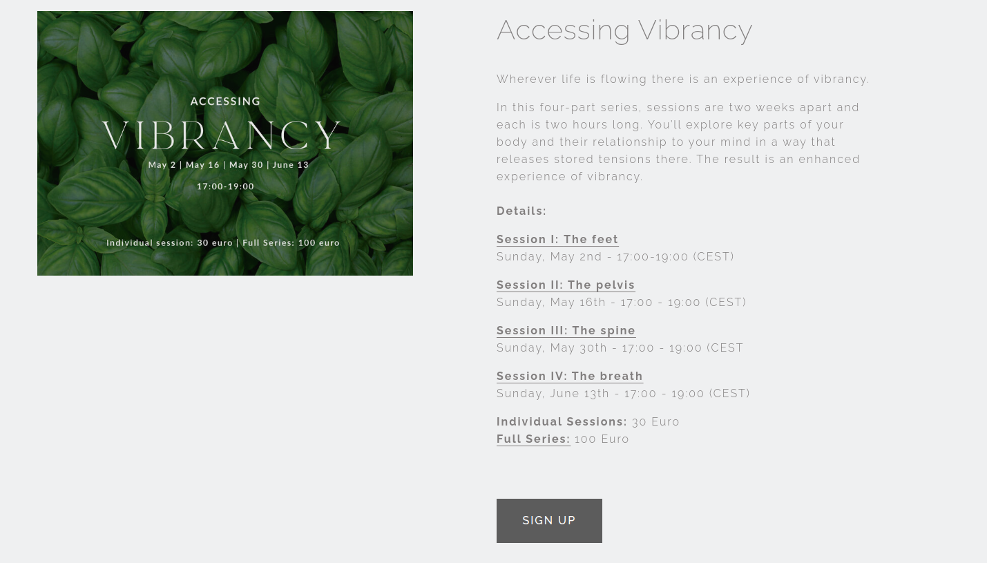 """Space BodyMind Consulting's """"Accessing Vibrancy"""" course"""