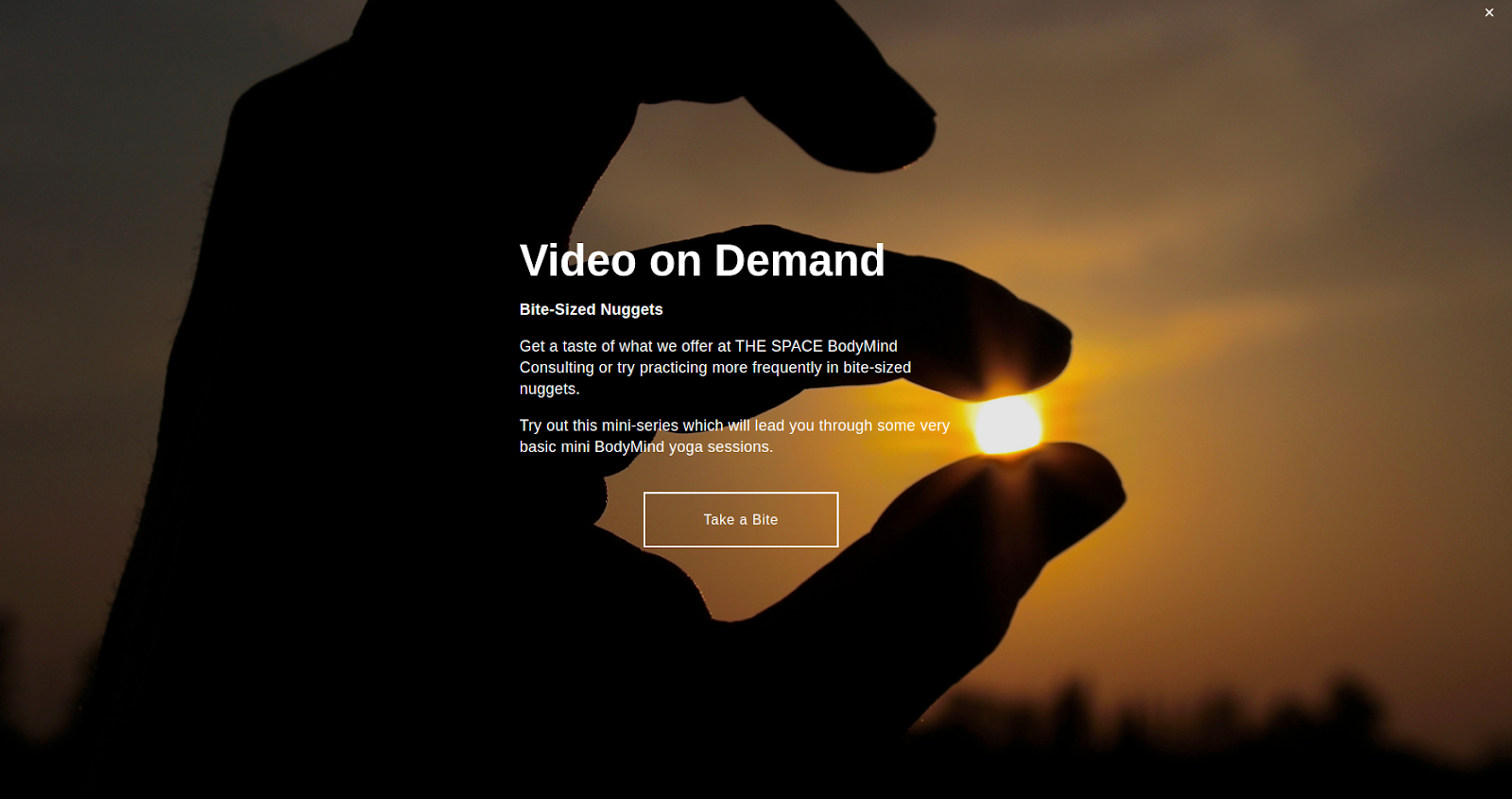 Space BodyMind Consulting's video-on-demand offer powered by bookee