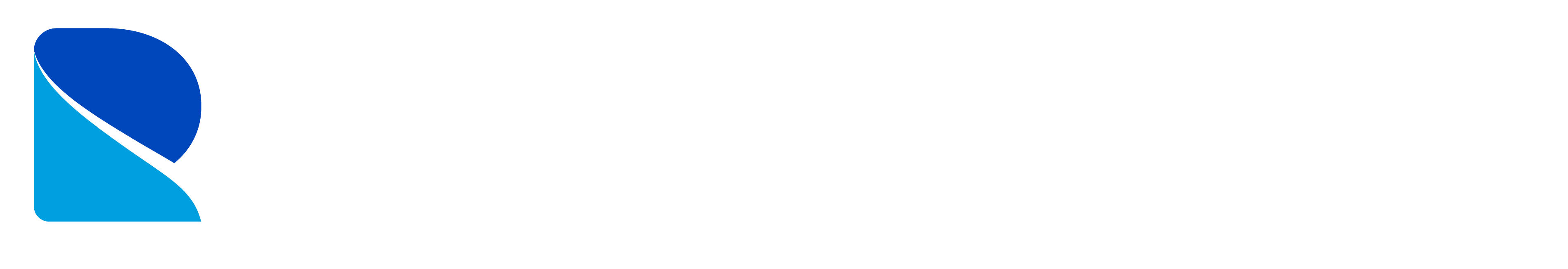 Data Refinery logo white