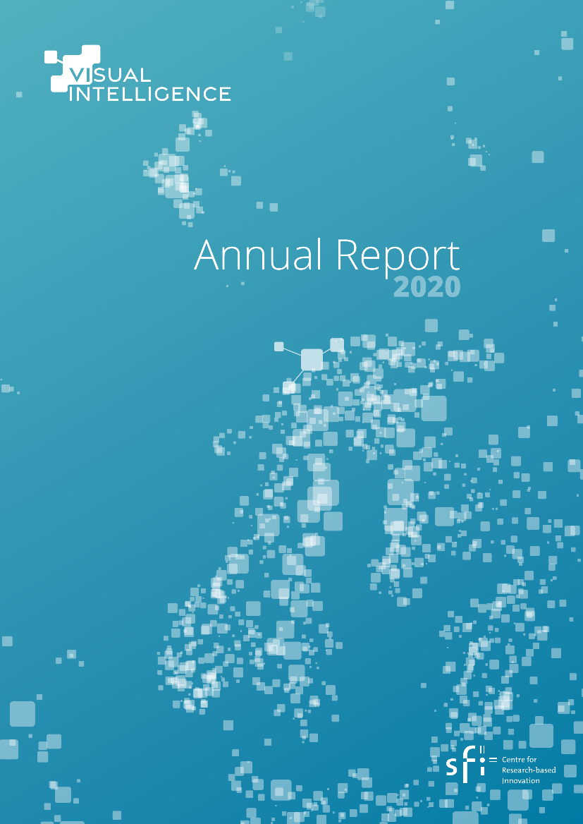 Visual Intelligence annual report 2020 cover.