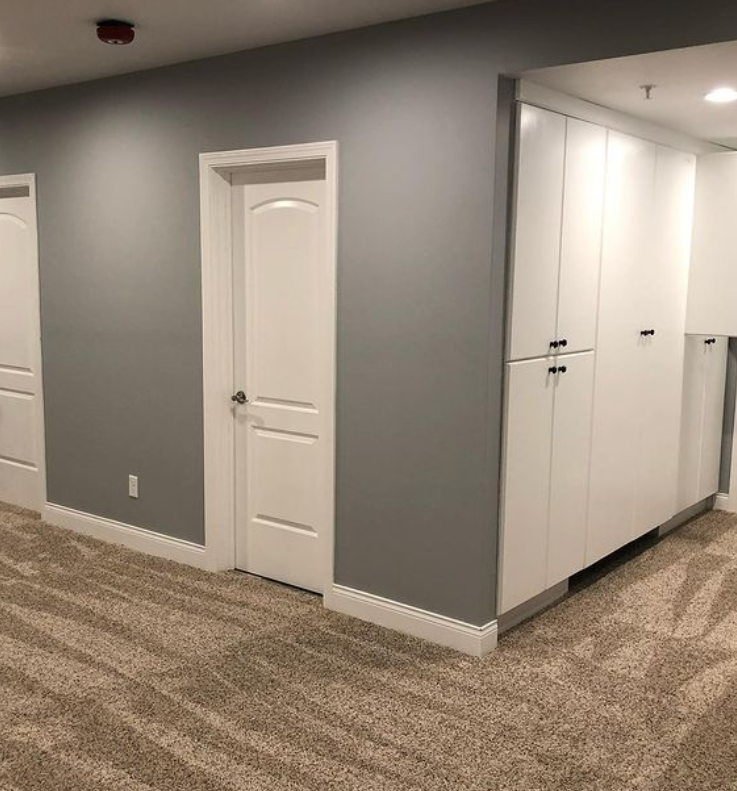 Will County Basement Renovation Services