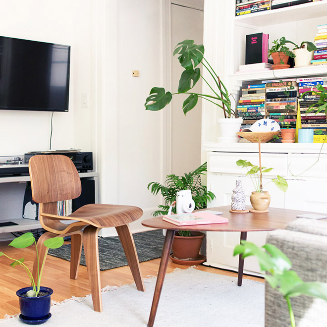 A bright and minimal apartment with some plants and a tv.