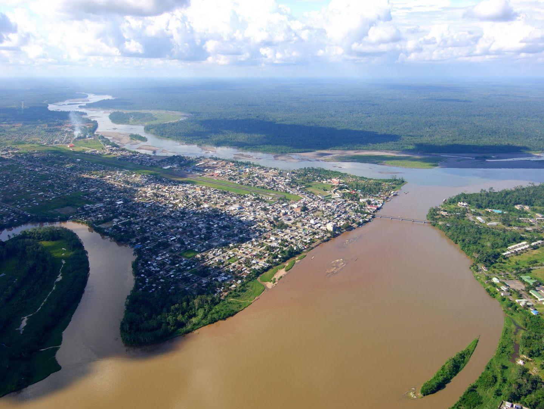 Contribución en la conservación del Bosque Amazónico, con la implementación participativa de cultivos alternativos en el Cantón Francisco de Orellana de Ecuador.