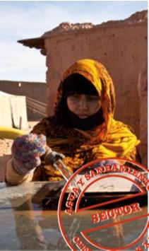 Mejora del abastecimiento de agua potable en los campamentos de refugiados saharauis, fase IX