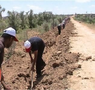 Mejora urgente de las condiciones socioeconómicas y de seguridad alimentaria de 1070 familias en Beit, Lahia, Beit Hanun, Jabalia y Moghragha, Franja de Gaza.