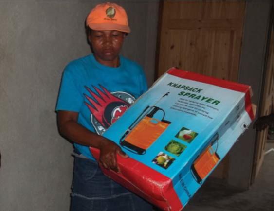 Apoyo a las familias campesinas de la 5a sección de Bainet para reducir su inseguridad alimentaria