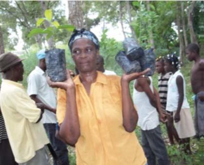 Apoyo al relanzamiento económico de 1720 familias de las 5a sección comunal Bas Grandou, Comuna de Bainet, tras el terremoto del 12 de enero de 2010
