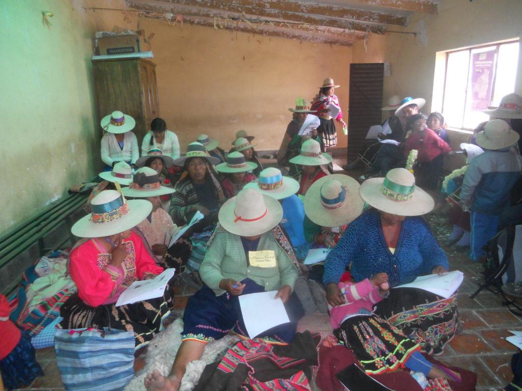 Fortalecimiento del liderazgo de mujeres indígenas y campesinas de 5 municipios de Cochabamba para la promoción y defensa de sus derechos (Bolivia)
