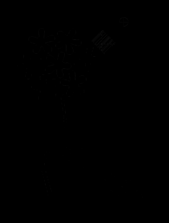 Colectivo BIZNEGRA