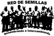 RED DE SEMILLAS RESEMBRANDO E INTERCAMBIANDO