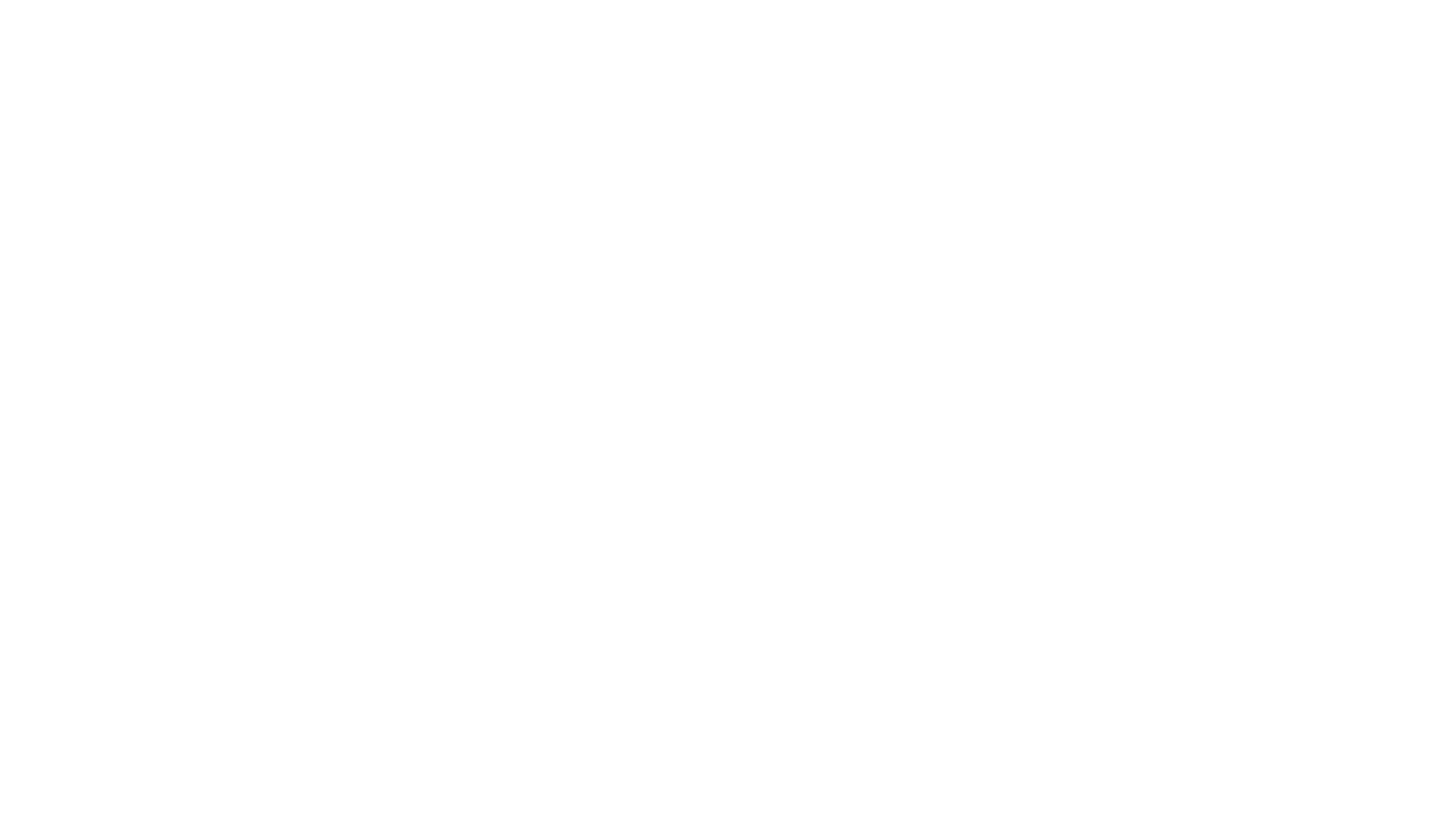 Xero bronze partner logo