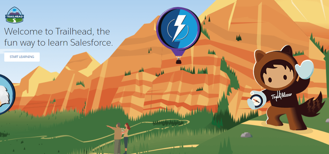 Why and How's of Salesforce Training