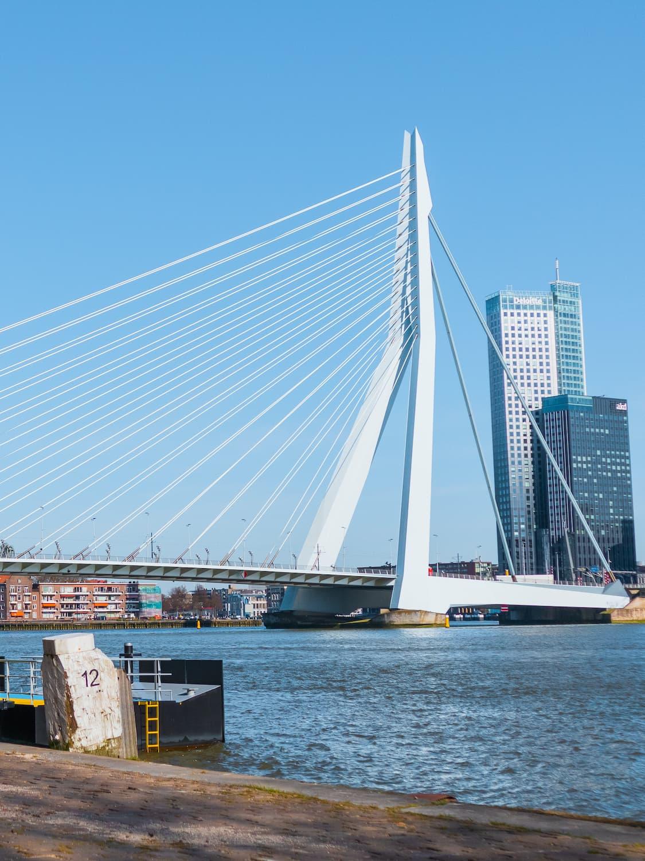 Dotbrand content marketing bureau Rotterdam