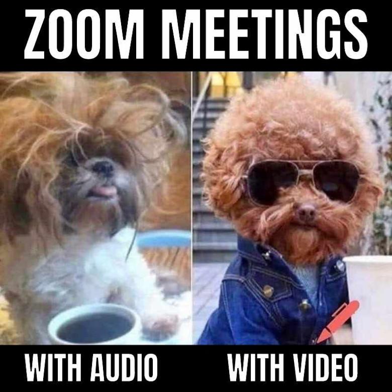 zoom-meeting-meme