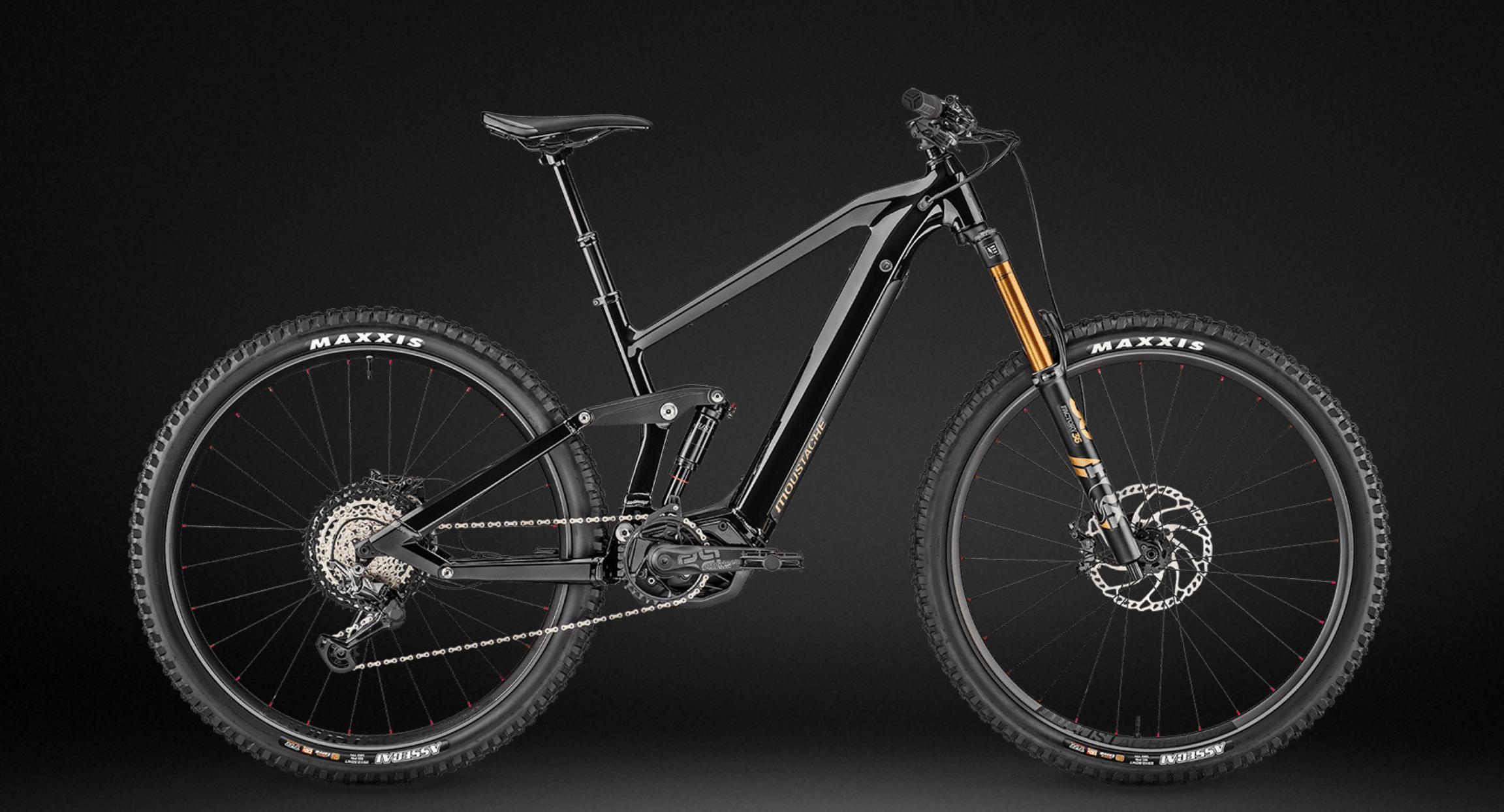 Perfektes Timing! Der neue Webshop mit E-Bikes von der Feldkircher Bikemanufaktur STROMWERK.