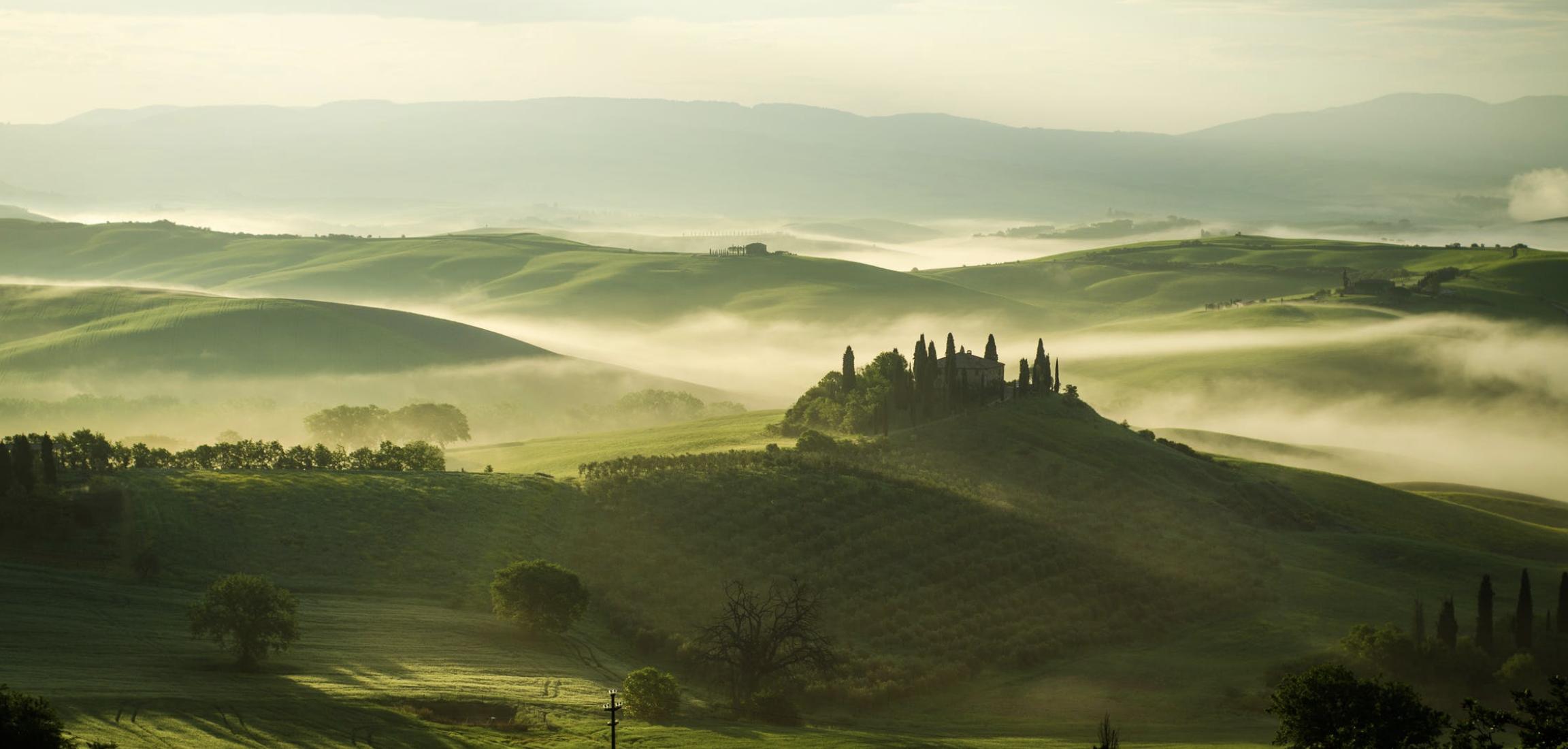 Tradition und Leidenschaft führen dazu, dass die Weinproduktion Haupttätigkeit von Ceralti ist.