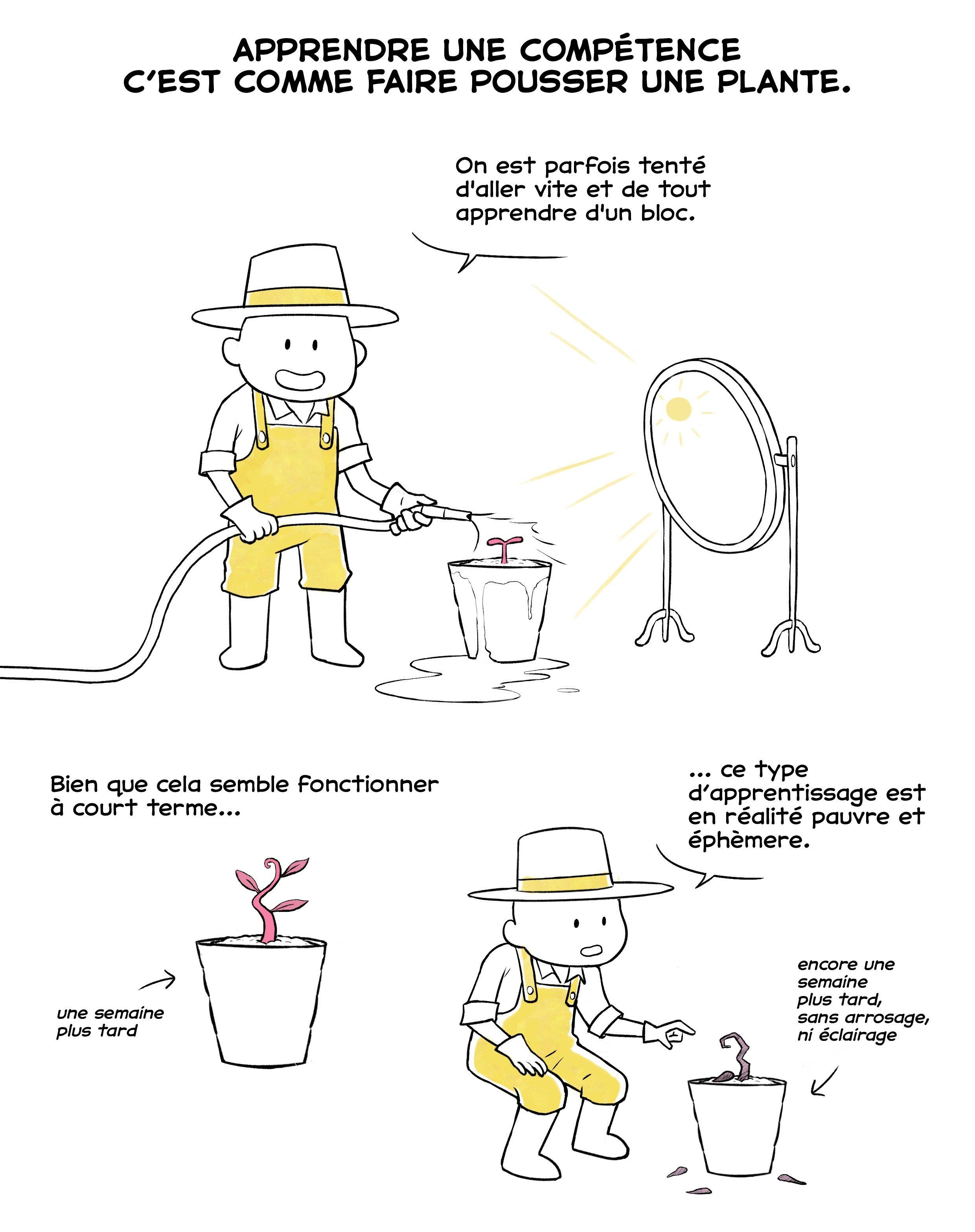 Effet de spacing pour un apprentissage durable : illustration 1