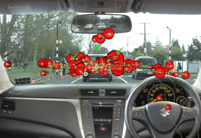 Tracking eye scanning movements while watching driving video simulation