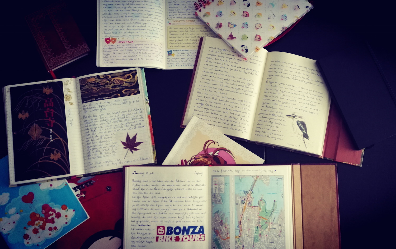 A collection of my travel journals