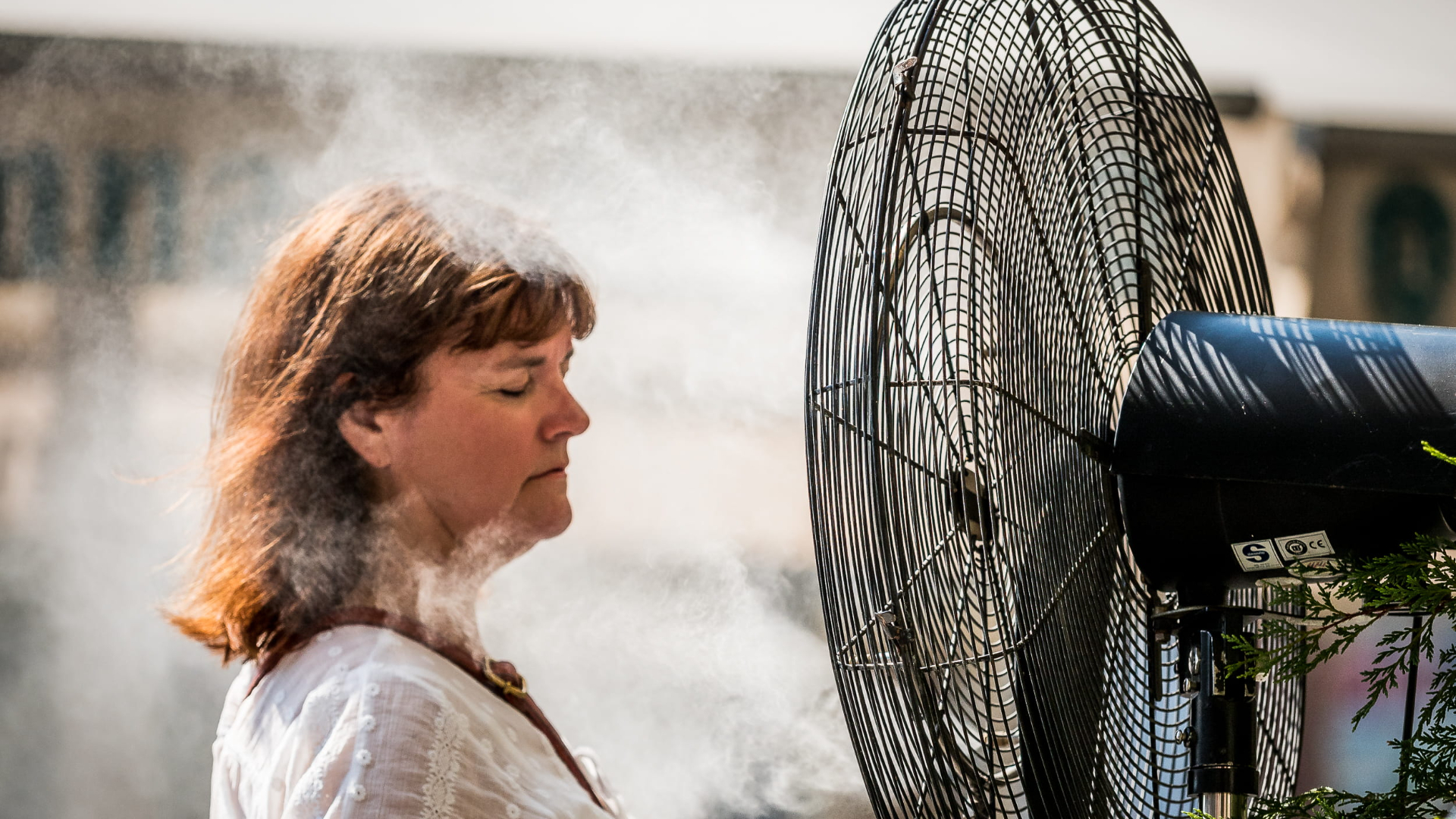 Värmeböljan skapar högre priser på elmarknaden. Foto: Creative Commons.