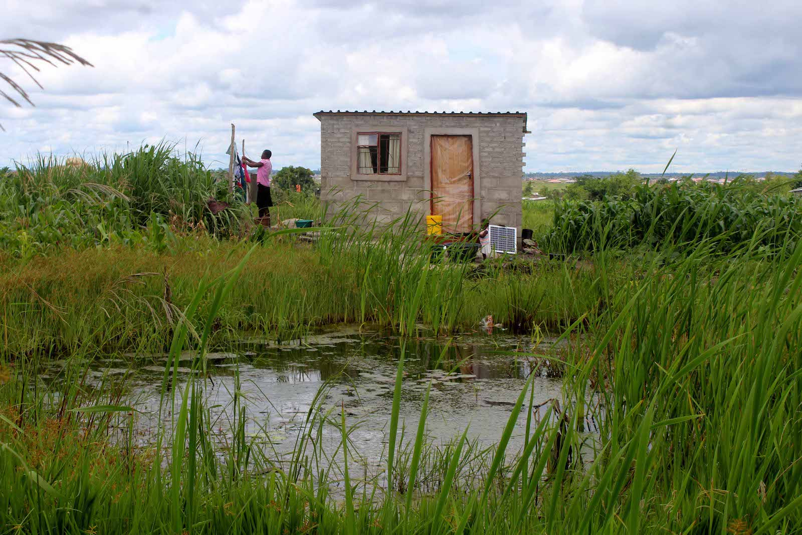 Wetlands Structure Demolitions: Much Behind the Smokescreen