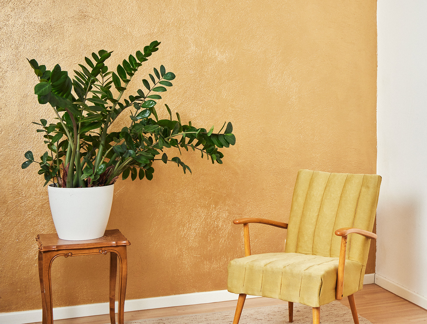 room with a plant and a comfortable chair
