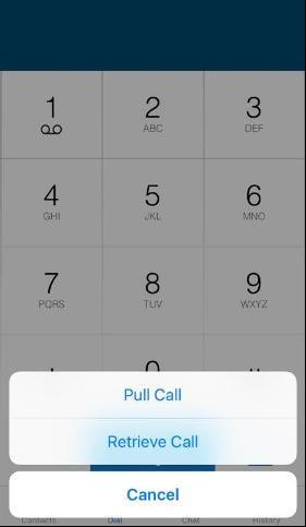 pull/ retrieve call