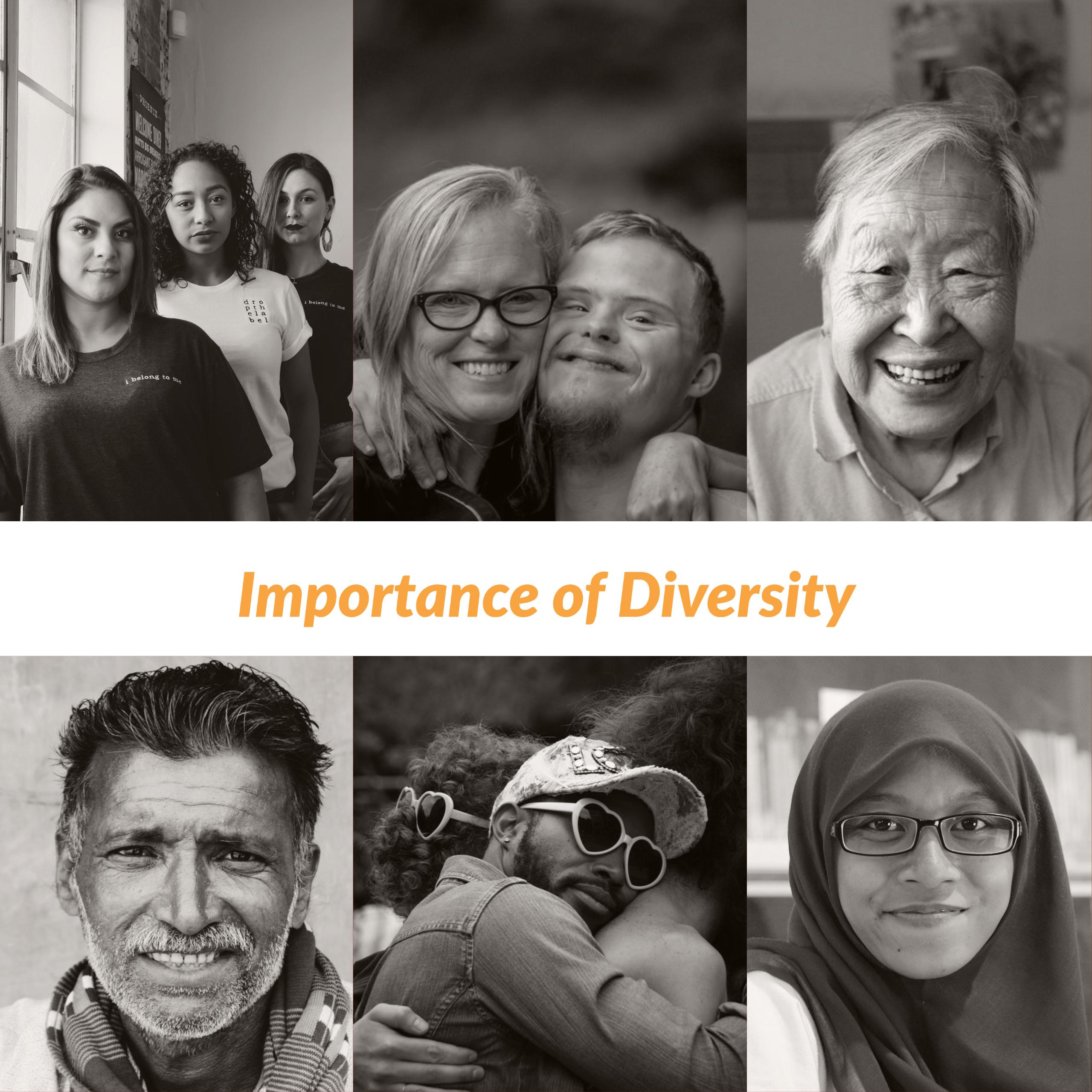 Lets Define Diversity!