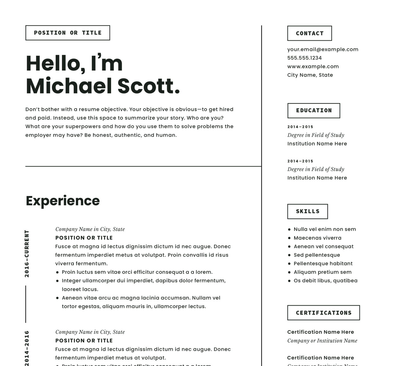 A modern resume design with two columns of information.