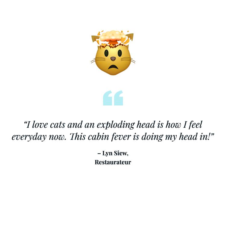 Exploding cat head emoji