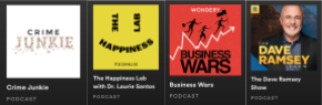 podcast title examples